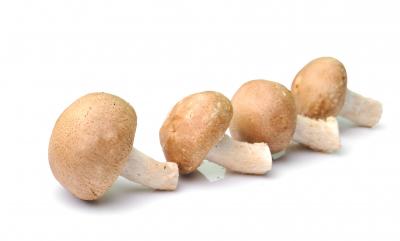 Salsa Vellutata Ai Funghi Per Bimby Tm5 Tm31