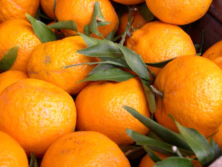Liquore al mandarinetto