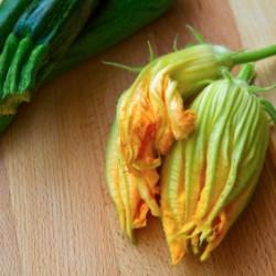 fiori di zucca bimby